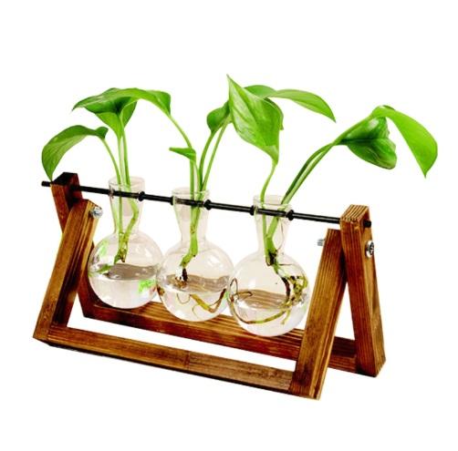 Terrarium Hydroponic Plant Vase